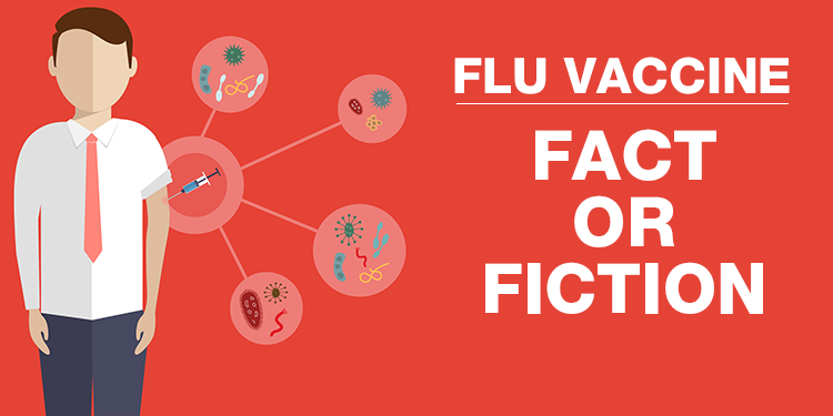 Flu vaccine: fact or fiction